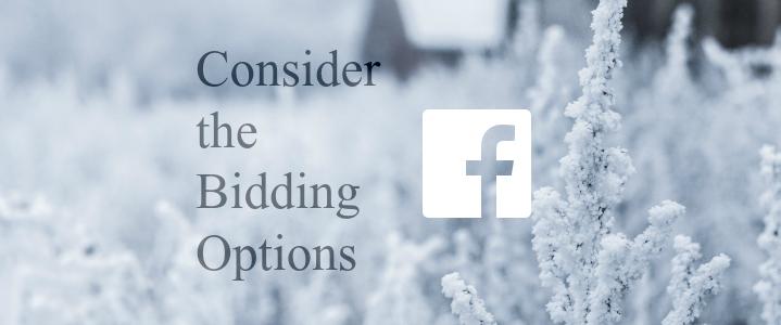 consider_facebook_bidding-options_ 3rd
