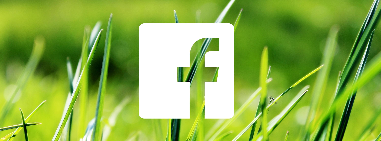 grass-724014